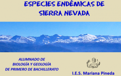 Especies endémicas de Sierra Nevada