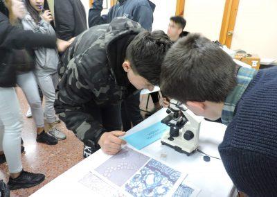 Feria de la Ciencia en el IES Mariana Pineda