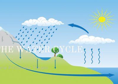 Proyecto hidrosfera. 1º ESO