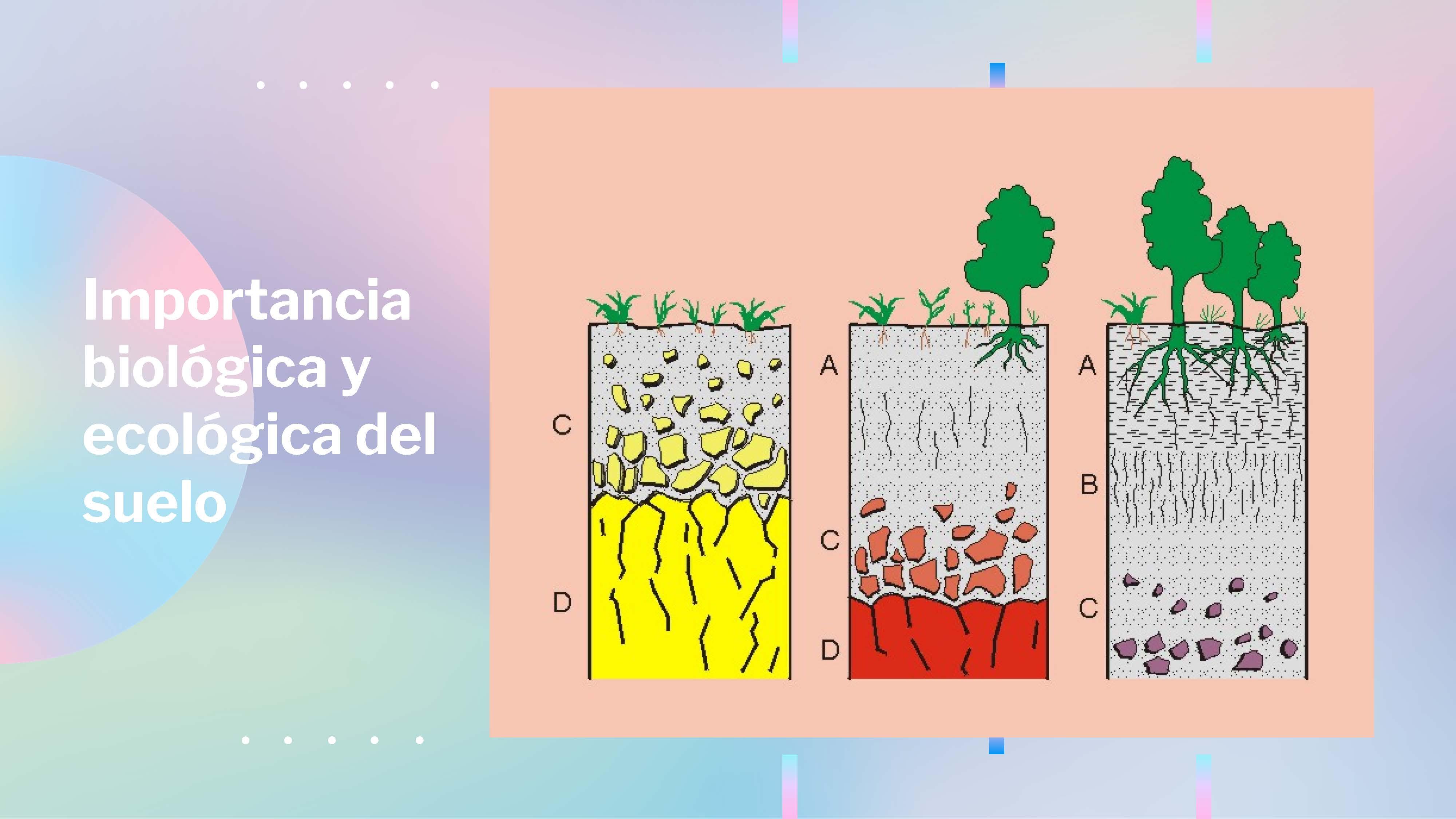 26 - EL SUELO_Página_3