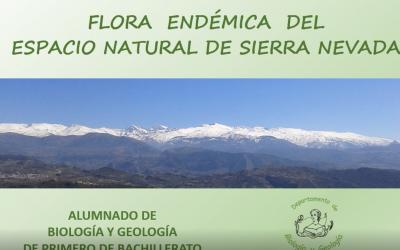 Flora endémica del Espacio Natural de Sierra Nevada